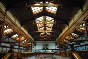 Animal Attic at the Otago Museum